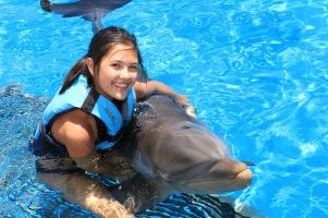Dolphin Swim00059