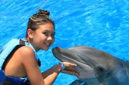 Dolphin Swim00063