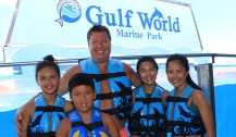 Dolphin Swim00111 copy
